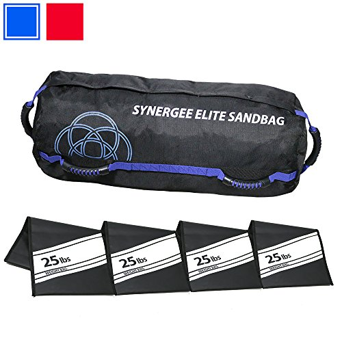 Synergee Elite Adjustable Fitness Sandbag with (4) Filler Bags 25-100lbs Heavy Duty Weight ()