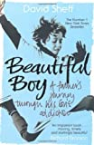 Beautiful Boy: A Father's Journey Through His Son's Addiction of Sheff, David on 05 January 2009