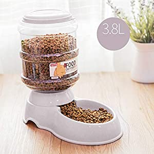 FairOnly 3.8L Pet Automatic Feeder/Drinking Fountain Storage Barrel for Dogs Teddy Cat Supplies Automatic Feeder Marble… Click on image for further info.