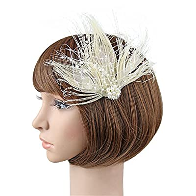 BAOBAO 1920s Women's Pearl Net Feather Hair Clip Gatsby Flapper Headwear Wedding Party