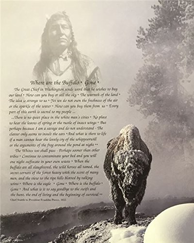 Unframed Print Where are The Buffalo Gone, (Native American Indian/Chief Seattle to President Franklin Pierce, 1855/21-8X10-F) 8x10 Inch Garcia, Art Print & ()