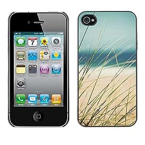 X-ray Impreso colorido protector duro espalda Funda piel de Shell para Apple iPhone 4 / iPhone 4S / 4S - Sun Ocean Sea Beach Sand