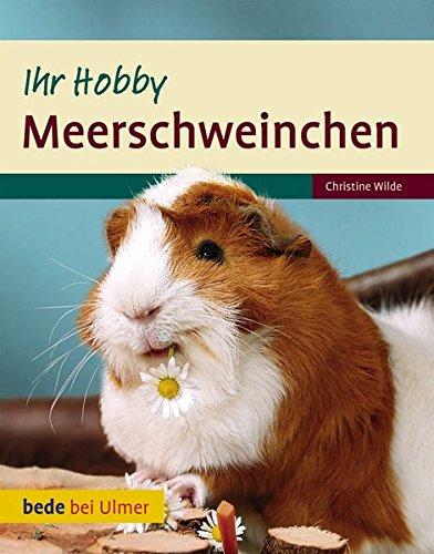 Ihr Hobby Meerschweinchen