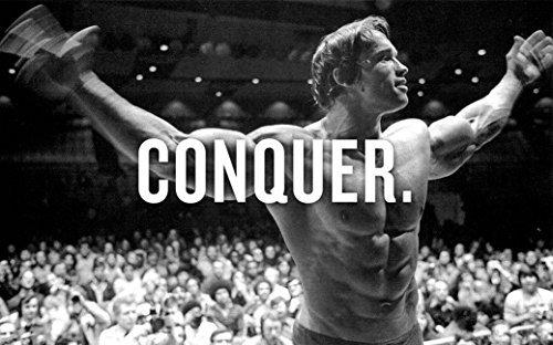 (Arnold Schwarzenegger poster 40 inch x 24 inch / 21 inch x 13 inch)