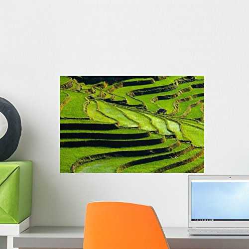 Wallmonkeys Terraced Rice Fields in Yunnan Province Wall Decal Peel and Stick Graphic WM228075 (18 in W x 12 in H) - Terraced Rice