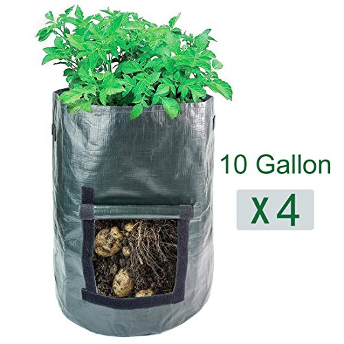 (AIPP 4 Pack 10 Gallon Garden Potato Growing Bags with Flap and Handles - Home Farm Planter Planting Bag PE Tub Pouch for Potato, Carrot,Onion&Vegetables Plant)