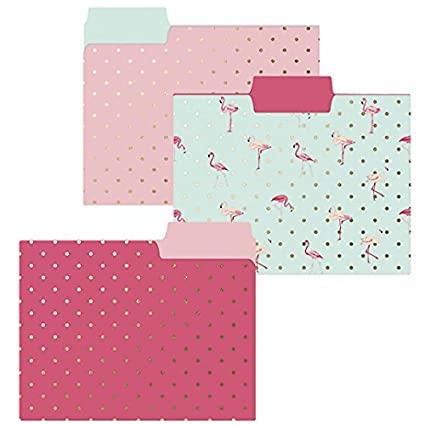 Graphique Patterned Colored File Folder (FIF008)