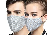 AVIGOR N95 Dust Mask Anti Pollution Face Mask Washable Antibacterial Cotton Mouth Mask (Line coffee blue)