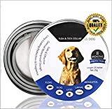 Flea and Tick Collar for All Kinds of Dogs- Adjustable Size & Waterproof Natural Safe