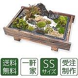 癒しの空間をお楽しみください。 苔盆栽 一軒家(SS)