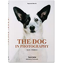 The Dog in Photography 1839 - Today
