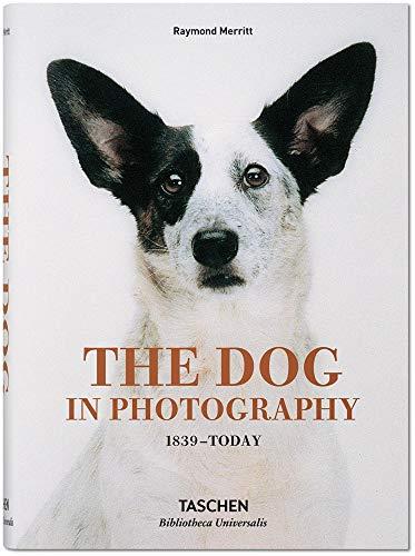 E.B.O.O.K The Dog in Photography: 1839-Today<br />[P.P.T]