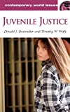 Juvenile Justice, Donald J. Shoemaker and Timothy W. Wolfe, 1576076415