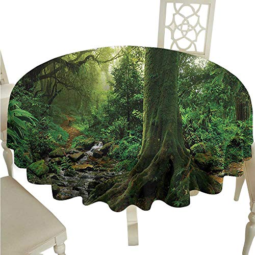 Willsd Restaurant Tablecloth Forest Rain Forest Scenery with River in The North Forest in The Early Morning Humid Fog Print Picnic D54 Suitable for picnics,queuing,Family