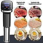 Sous Vide Precision Culinary Cooker Nano