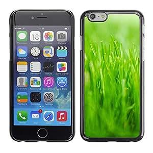 TopCaseStore / la caja del caucho duro de la cubierta de protección de la piel - Nature Beautiful Forrest Green 22 - Apple iPhone 6