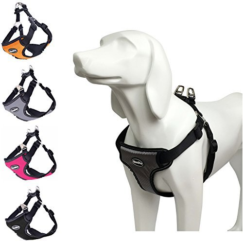 Reflective Mesh Sport Harness - BINGPET No Pull Dog Harness Reflective for Pet Puppy Freedom Walking Medium Grey