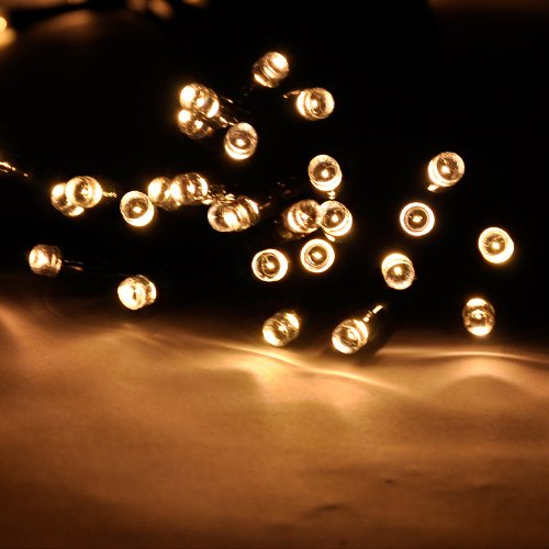 Battery String Lights Indoor : Lychee Operated Outdoor and Indoor Battery String Lights With 8 Functions for