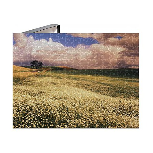 Media Storehouse 252 Piece Puzzle of USA, Washington State, Palouse Area, Oxeye Daises (Leucenthemum (11171146)