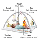 Fisher-Price Perfect Sense Deluxe Gym, Plush Infant Play Mat with Toys