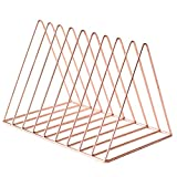 D DOLITY Chic Rose Gold Metal Wire Book Magazine Display Rack, Desktop Bookshelf Bookrack