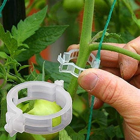 JUST N1 Plant Clips Trellis Garden Support for Vine Vegetable Flower Stem Tomato Binder Twine Orchid Grow Upright (50pcs, White)