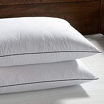 Amazon Com Basic Beyond Feather Goose Down Pillow 600