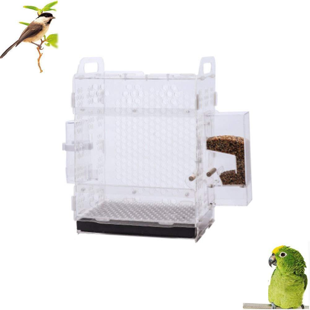 DZENJ Assemblaggio Assemblaggio Assemblaggio Gabbia per Uccelli in Acrilico Trasparente Adatto per Allevamento Gabbia Tigre Pelle peonia Nuvola Acacia Uccello Piccolo Uccello 25  20  35 2250bb