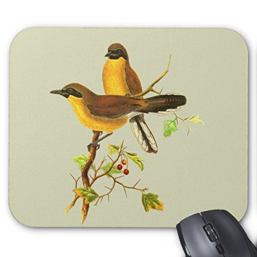 Julyou Mousepad Yellow-Throated Laughingthrush Mouse Mat