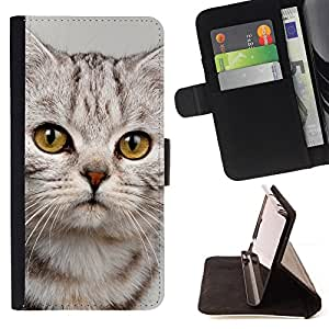 For Samsung Galaxy S6 Cute Sad Kitten Cat Kitty Furry Beige Style PU Leather Case Wallet Flip Stand Flap Closure Cover