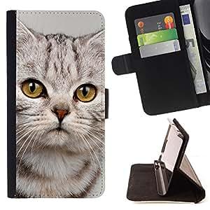 - Cute Sad Kitten Cat Kitty Furry Beige - - Monedero PU titular de la tarjeta de cr????dito de cuero cubierta de la caja de la bolsa FOR Apple Iphone 6 PLUS 5.5 RetroCandy