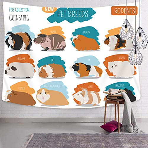 Peyqigo Wall Hanging Tapestry 50x60 Inch Polyester Minimalist Illustration Types Pet Rodents Soft Pastel Coloring Brush Strokes Bedroom Living Room Dorm Decoration Picnic Mat Beach Towel (Best Pet Pig Breeds)