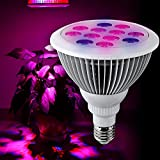 Happy Hours - 12 LED Plant Grow Lights with 3 Blue Leds & 9 Red Leds / Flower Vegetable Hydroponic Aquatic Plants Growing Bulbs for Indoor Garden and Greenhouse