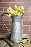 Richland Galvanized Metal 12 Inch Watering Can Set of 8