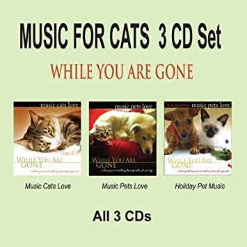 MUSIC FOR CATS 3 CD Set - While You Are Gone, Cat Music