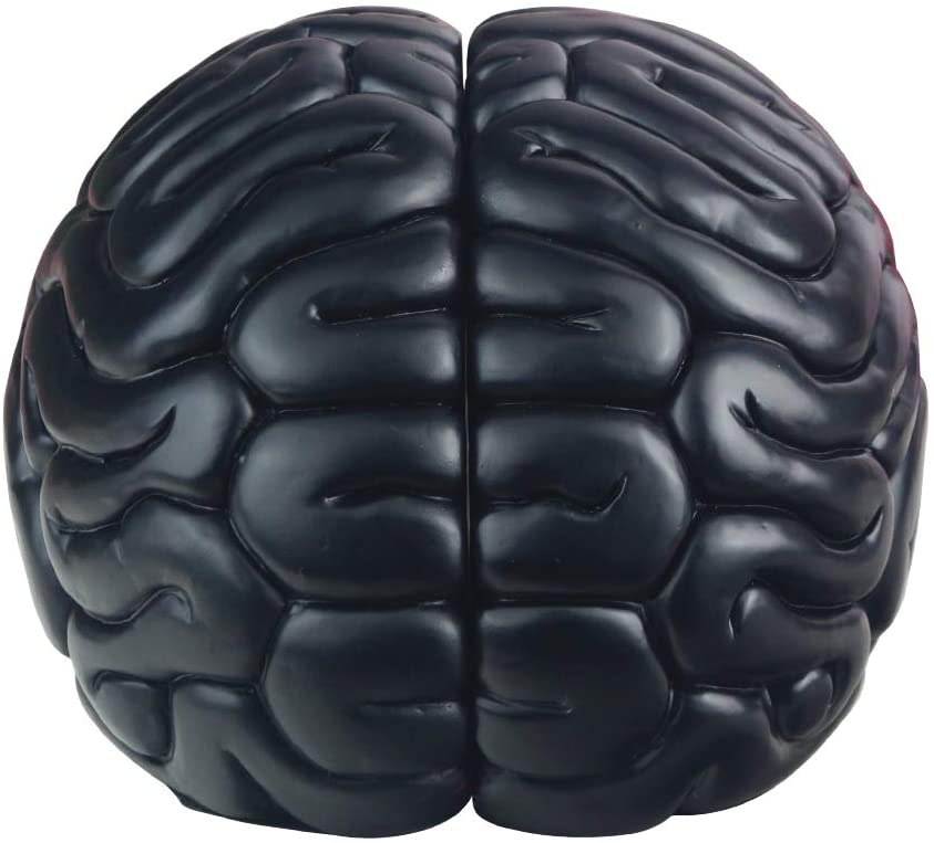 JHP Brain Bookends, 6.5Inch Tall Brain Decorative Resin Book Shelf Organizers Book Holders Shelf Dividers Book Ends for Home or Office Shelves Brain Sculpture Bookend Set