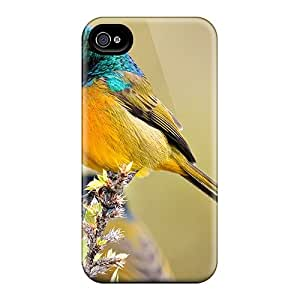 Series Skin Case Cover For Iphone 4/4s(orange Breasted Sunbird)