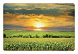 Lunarable Rustic Pet Mat for Food and Water, Corn Field and Sunrise Summer Sky Natural Paradise Pasture Mourning View Picture, Rectangle Non-Slip Rubber Mat for Dogs and Cats, Yellow Green