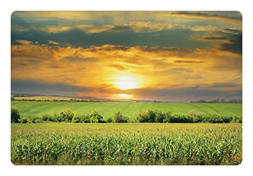 Lunarable Rustic Pet Mat for Food and Water, Corn Field and Sunrise Summer Sky Natural Paradise Pasture Mourning View Picture, Rectangle Non-Slip Rubber Mat for Dogs and Cats, Yellow Green by Lunarable