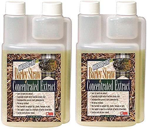 Microbe Lift MLCBSE500 Barley Straw Concentrated Extract Pond Conditioner (32 Ounces) (Barley Microbe Straw Lift Concentrated)