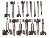New 16pc Forstner Bit Set w/Case Wood Hole Forestner Clean Cutting by Drill Bits