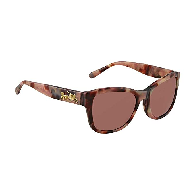 bbced3a50275 Sunglasses Coach HC 8243 552875 OXBLOOD TORT: Amazon.ca: Clothing &  Accessories