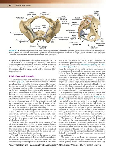 Urogynecology and Reconstructive Pelvic Surgery