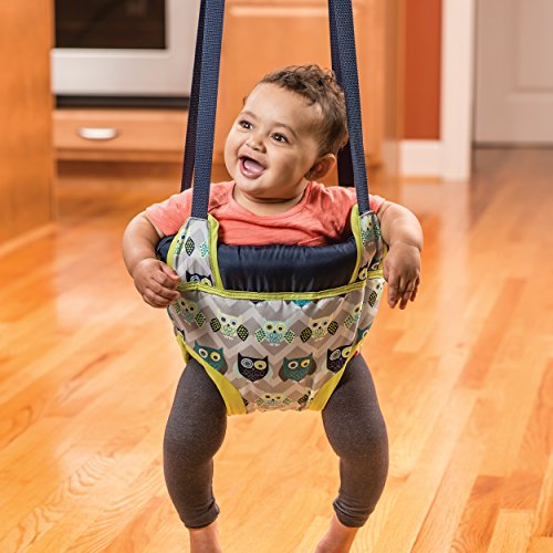 Evenflo Exersaucer Door Jumper, Owl