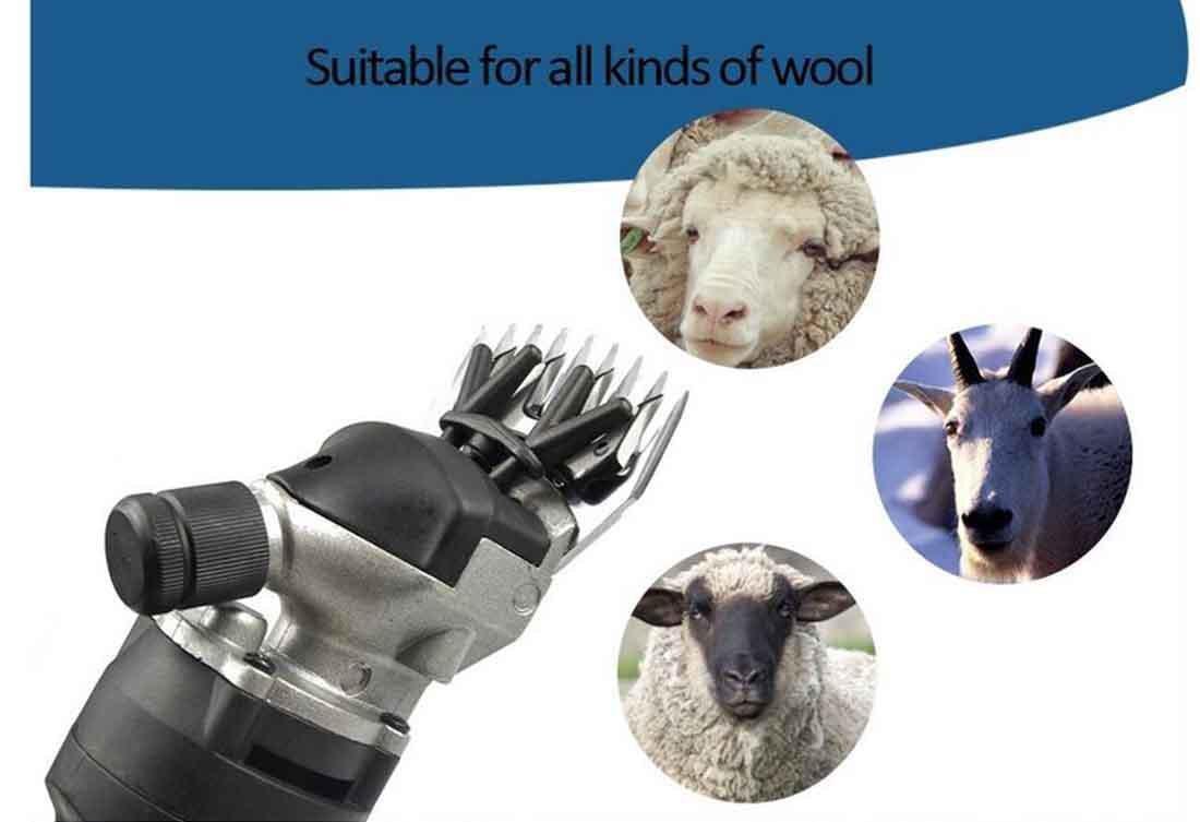 Vinteky Esquiladora para ovejas 320/W