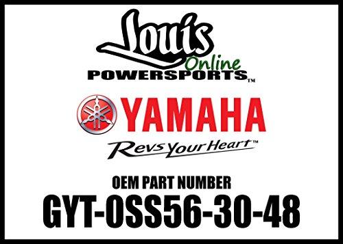 Yamaha Wr250X - 7