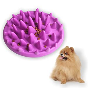Andiker Pet Interactive Fun Feeder Bowl,Non Slip Puzzle Bowl Fun Feeder,Slow Feeder Bowls are Suitable for Dog & Cat