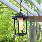 LOG BARN 1-Light Transitional Pendant Lights Porch Outdoor Hanging Lighting Review