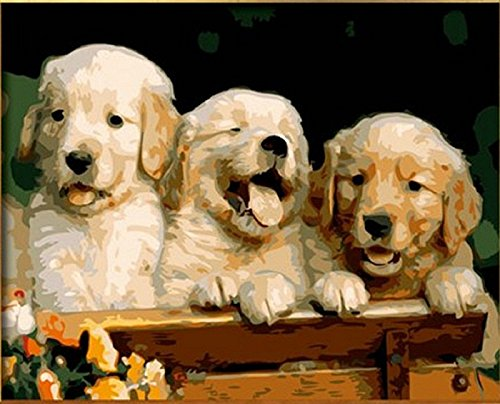 Lovely three bros 16x20 inch dogs animal Frameless