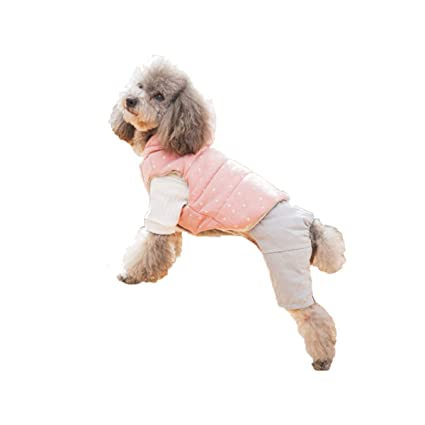 19383539bf2a1 Amazon.com : haoweidaoshanghang Dog Clothes, Two-Piece Winter Coat ...